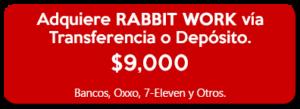 BotonesTransferencia-o-Deposito--Rabbit-Work-2018